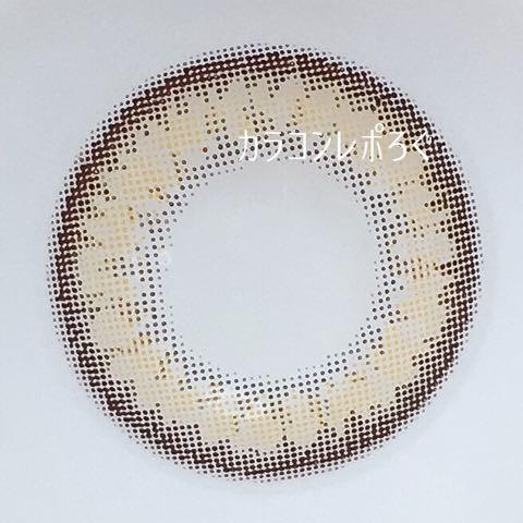 エバーカラーワンデーモイストレーベル・リッチグラム・レンズ画像