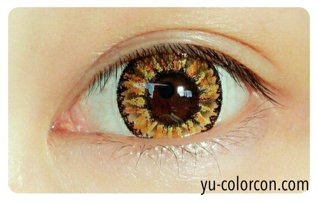 i-lensガウディ4カラーブラウンレポ・太陽光装着画像