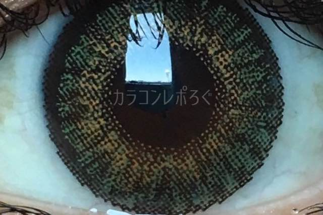 フレッシュルックデイリーズ/グリーン/着画アップ