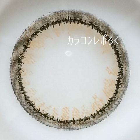 リングツー/Ⅱブラウンレポ・レンズ画像