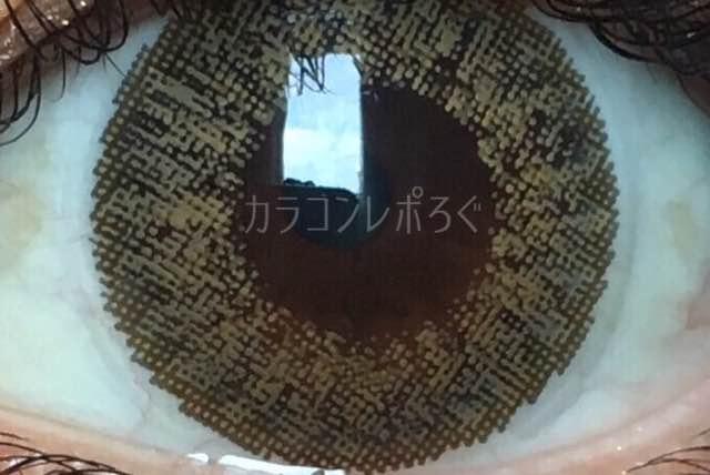 シュガーブラウン/ジューシーカラー着画アップ