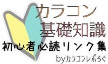 基礎知識*カラコン初心者さん向けおすすめ記事まとめ/リンク集