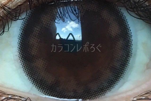 アコルデデイリーベーシックブラウン/着画アップ