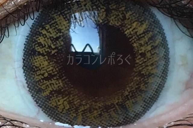 アコルデ/Acordeホリデイヘーゼル/着画アップ
