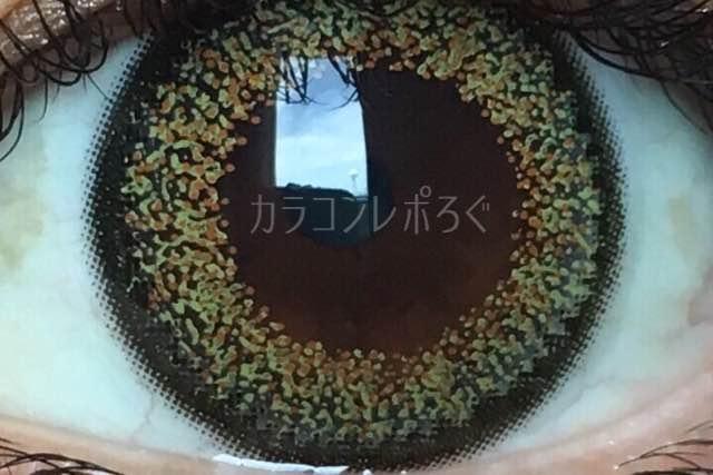 ミッシュブルーミンシアーカーキ/着画アップ
