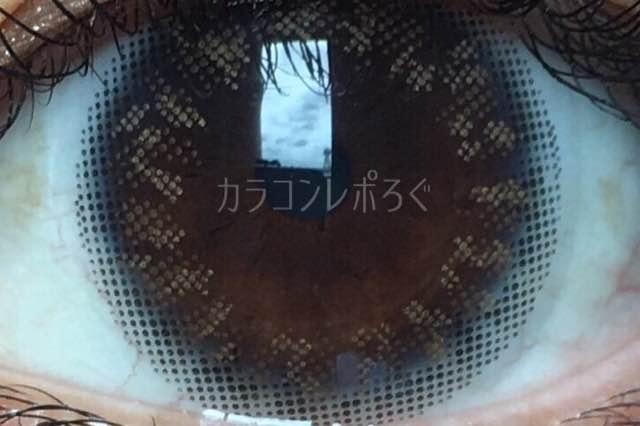 No.4ブリュムブラウン/アイラボワンデー着画アップ