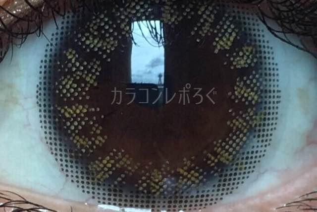 No.3ブリュムヘーゼル/アイラボワンデー着画アップ