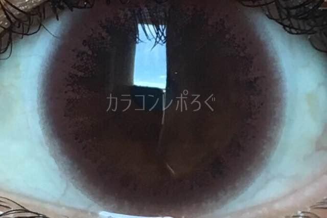 エルージュクラリティブラウン/着画アップ