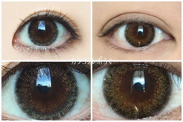 プティア エルムヘーゼル 黒目と茶目発色の違い比較