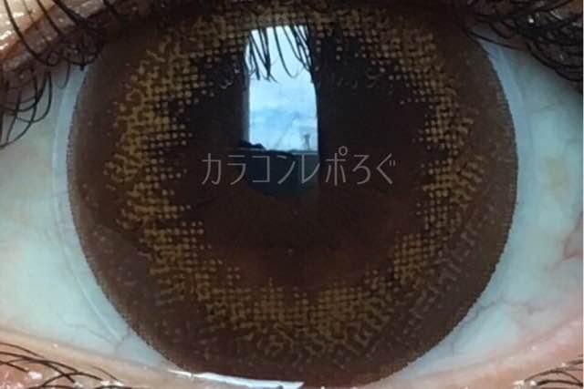 フランミードーナツブラウン/着画アップ