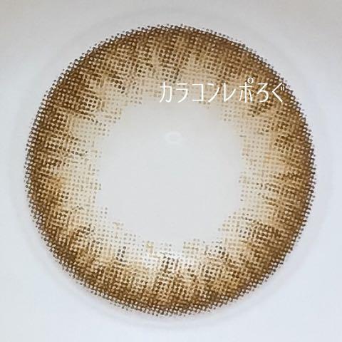 シルクブラウン(シリコンハイドロゲル)レンズ画像