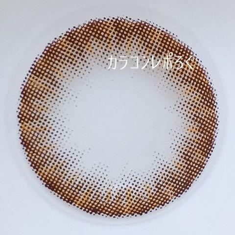 タンポポブラウン(dandelion)レンズ画像