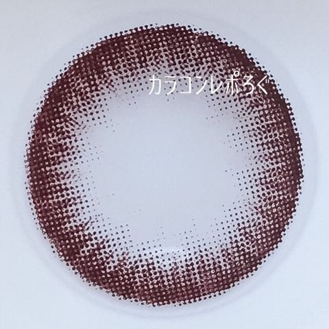タンポポチョコ(dandelion)レンズ画像