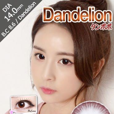 タンポポチョコ(dandelion)口コミ/評判/感想