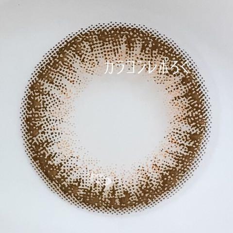 シェリーファッジ*エバーカラーワンデーモイストレーベル・レンズ画像