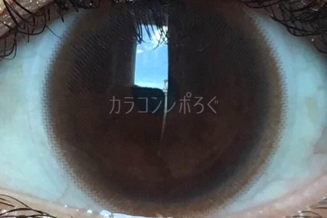 エルージュシアーブラウン/着画アップ