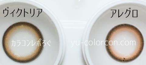 ヴィクトリアワンデーアクアメープル&アレグロ2ウィークアルトブラウンレンズ違い比較