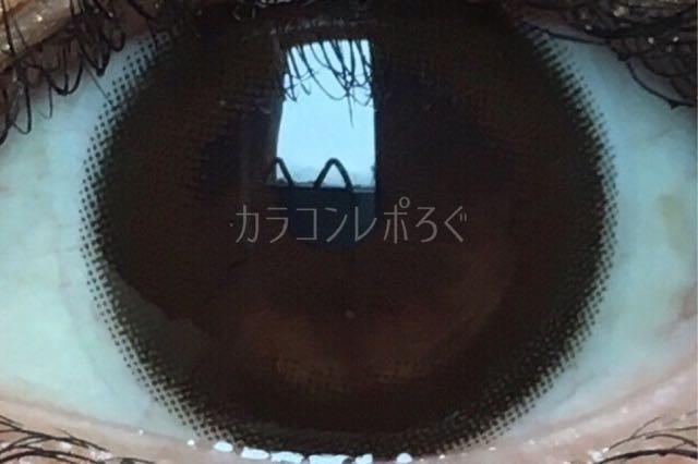 ダークブラウン/ユーザーセレクトワンデー着画アップ