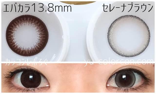 セレーナブラウン(ダイヤワンデー)大きさ/サイズ/着色直径検証