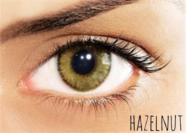 hazelnut(ソロティカ/Solotica_Natural_Colors)