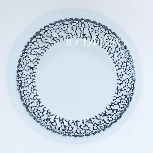 ボシュロムナチュレールピュアブラック/レンズ画像