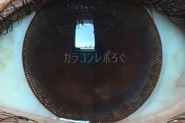 レディドール/アネコンオトナワンデー着画アップ