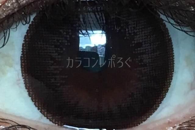 ショコラブラック/ワンデーティアモ着画アップ