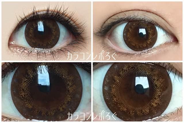 フランミーオレンジブラウニー黒目と茶目発色の違い比較