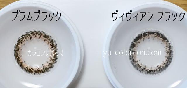 アンヴィプラムブラック&ヴィヴィアンワンデーブラック レンズの違い比較