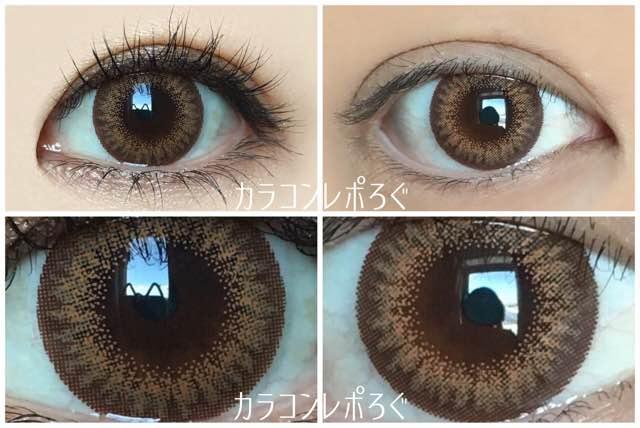 ラスターマンスリープライムゴールド/黒目と茶目発色の違い比較
