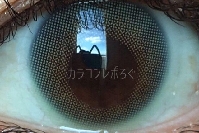 ロイヤルミント(ルーチェ/LUCE Gaijin series)着画アップ