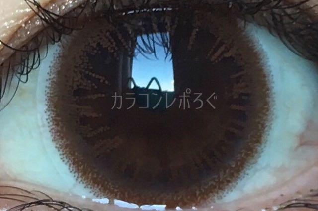 フェアリーワンデーブライトブラウン/着画アップ