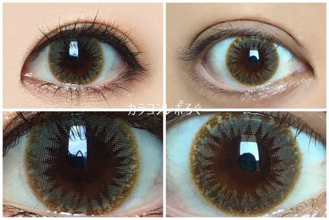 スウィーティーヘーゼル(シュガーフィール)黒目と茶目発色の違い比較