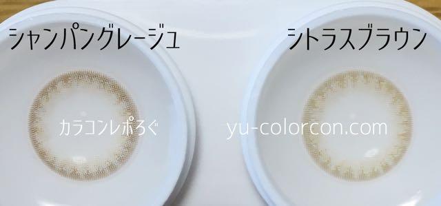 シャンパングレージュ&シトラスブラウン レンズの違い比較(ハニードロップスワンデー)