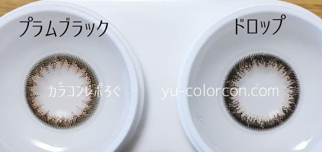 アンヴィプラムブラック&パッピードロップ レンズの違い比較