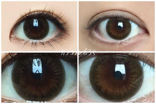 ヘルシーオリーブ(プリュリーハローサンシャイン)黒目と茶目発色の違い比較