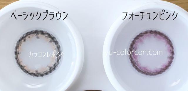 アコルデ ベーシックブラウン&フォーチュンピンク レンズの違い比較