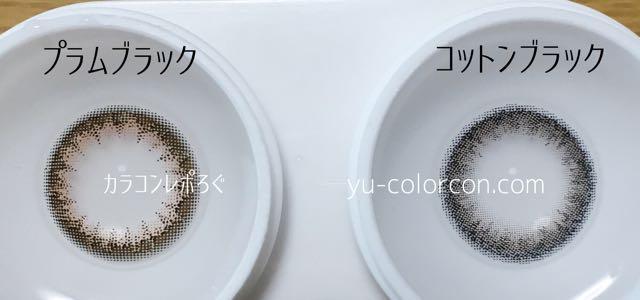 アンヴィ プラムブラック&フェミー コットンブラック レンズの違い比較
